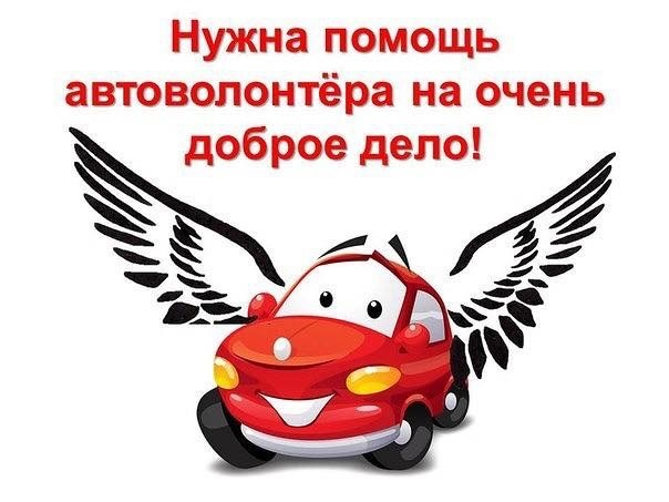 Требуется автоволонтёр!